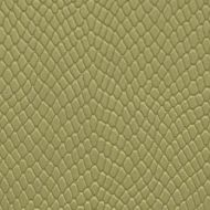 Tropical Green - Textured